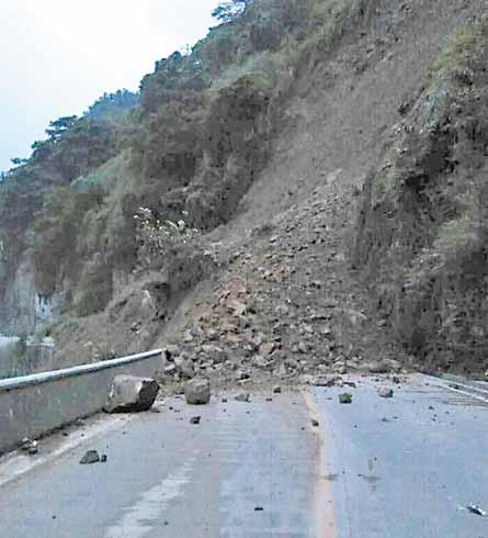 司机倒车救42人 旅游外出意外险不可少